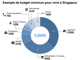 Exemple de budget pour vivre a Singapour