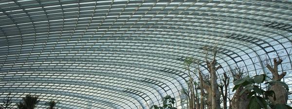 Dans une serre de Gardens by the Bay à Singapour