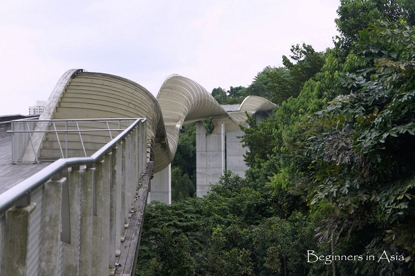 Singapour, Henderson Waves - Photo de Sylvie (Beginners in Asia)