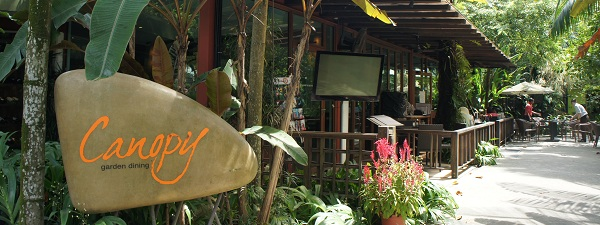 Brunch à Canopy (Bishan Park)