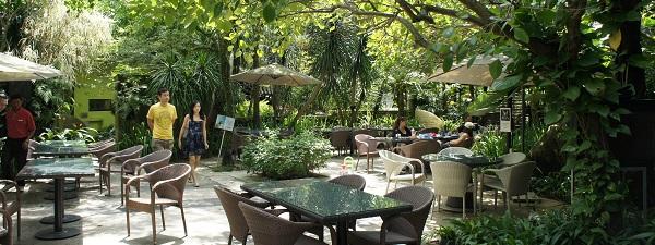 Terrasse du restaurant Canopy à Bishan Park