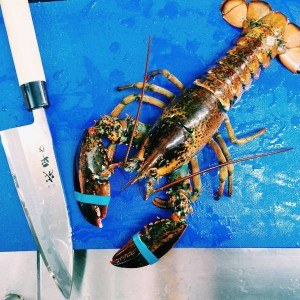 Release the kraken - Copyright Pince & Pints