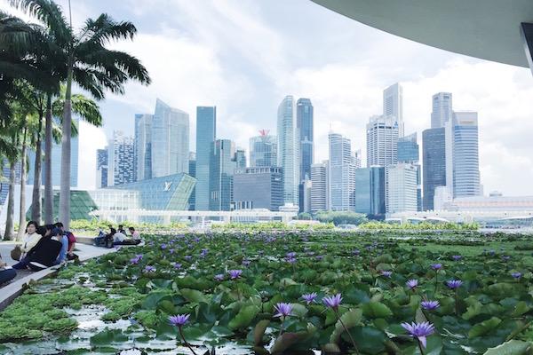 Cité-Etat de Singapour