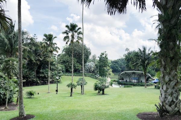 Botanic gardens singapour