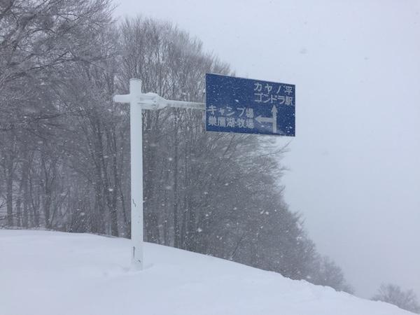 perdu dans la neige de Nozawa Onsen